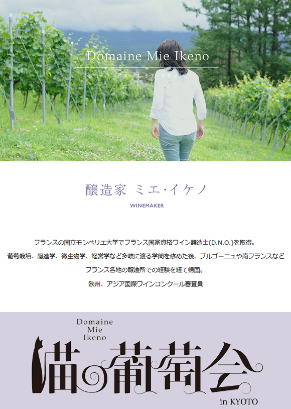 winegrocery-wineevent20160707
